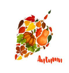 autumn pumpkin leaf foliage greeting poster vector image