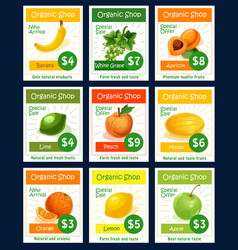 fruit tag and label set for organic shop design vector image vector image