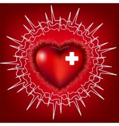 heart electrocardiogram vector image vector image