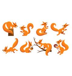 funny squirrel set vector image