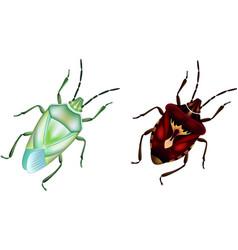 ODC Beetles vector