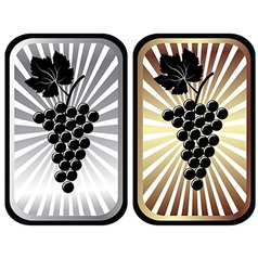 Shiny labels with grapes advertisement for wine vector image