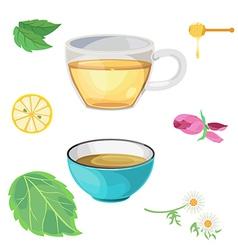 tea glass vector image