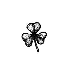 hand drawn shamrock vector image vector image
