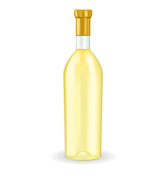 bottle of white wine vector image