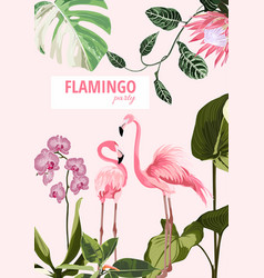 Exotic pink flamingo birds with leaves and orchid vector