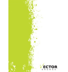 Green splat grunge vector image