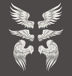 Set angelic or bird wings vector