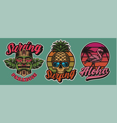 set colourful hawaii surfing with tiki mask vector image