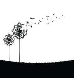 Dandelion in nature vector