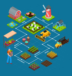 Farm isometric flowchart vector