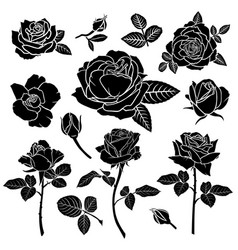 silhouette a rose flower set vector image