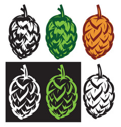 Stylish set of hop cones vector