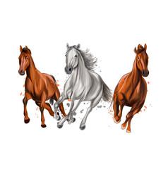 three horses run gallop from splash watercolors vector image