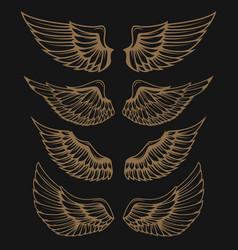 Set of golden wings on dark background vector