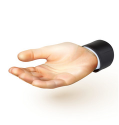 Realistic hand vector image vector image
