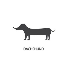 Cute dachshund dog silhouette isolated on white vector