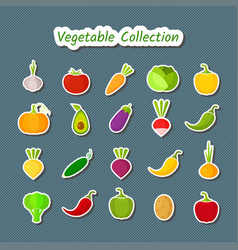 cute design vegetable icon set of isolated patches vector image