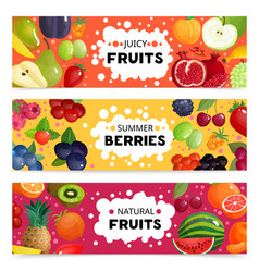 fruits and berries banners vector image