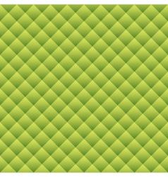 Green snake skin vector