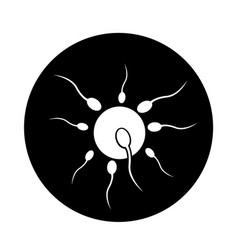 human sperm cell icon design vector image
