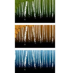 Birchwood vector image