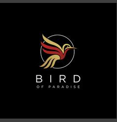 abstract bird paradise logo icon template vector image