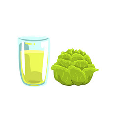 Cabbage vegetable juice glass of natural vector