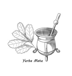Calabash and bombilla for yerba mate drink mate vector