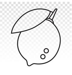 Citrus lemon fruit with leaf line art icon vector