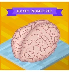 Human brain flat isometric icon vector