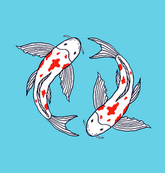 koi fishes on blue background vector image