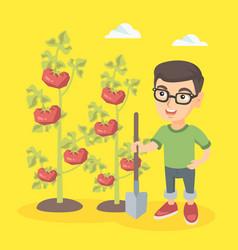 Little caucasian farmer boy cultivating tomatoes vector