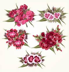 Set pink flowers in detailed and realistic style vector