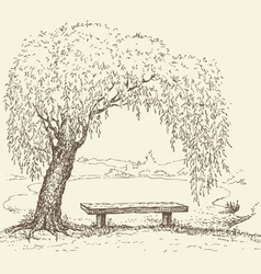 Wooden bench under a willow tree by the lake vector