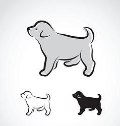 Dog labrador puppy vector image vector image