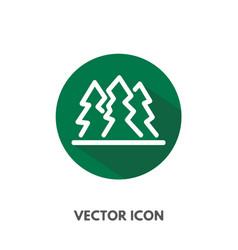 pine tree icon vector image vector image