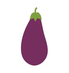 eggplant vegetable natural vector image