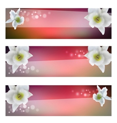 Flower header with blossom orchid vector