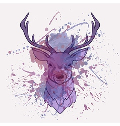 grunge deer with watercolor splash vector image
