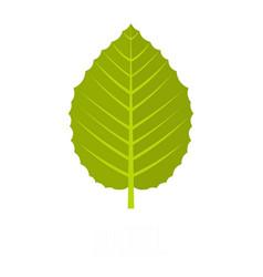 Hazel leaf icon flat style vector