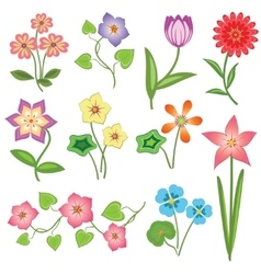 Spring flower icon set Tulip chamomile daisy vector image