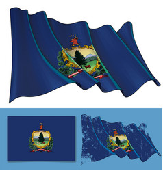 waving flag state vermont vector image