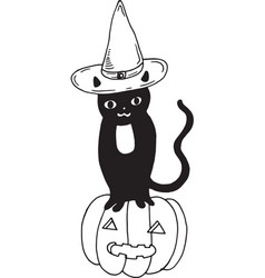 black cat with hat and pumpkin halloween vector image