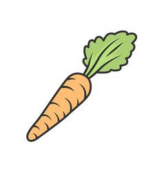 Carrot color icon vector