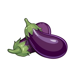 Couple of eggplants vector image vector image