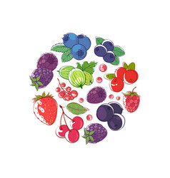 Fresh berries concept vector