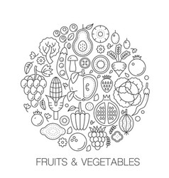 fruits vegetables food in circle - concept line vector image