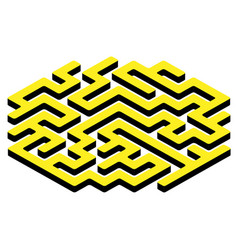 Labyrinth maze game vector