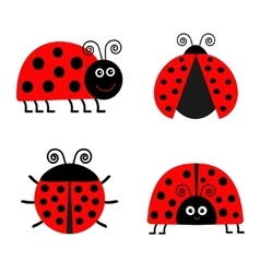 Ladybug Ladybird icon set Baby background Funny vector image